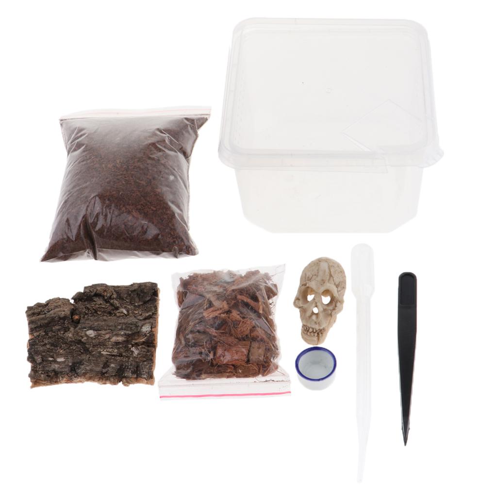 Scatola-da-Riproduzione-in-Plastica-Custodia-per-Allevamento-Terrari-Rettili miniatura 4