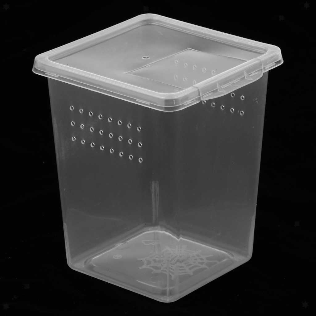 Scatola-da-Riproduzione-in-Plastica-Custodia-per-Allevamento-Terrari-Rettili miniatura 7