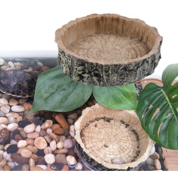 thumbnail 7 - Reptile Food and Water Dish Small Pet Corner Feeding Bowl  Spider Geckos