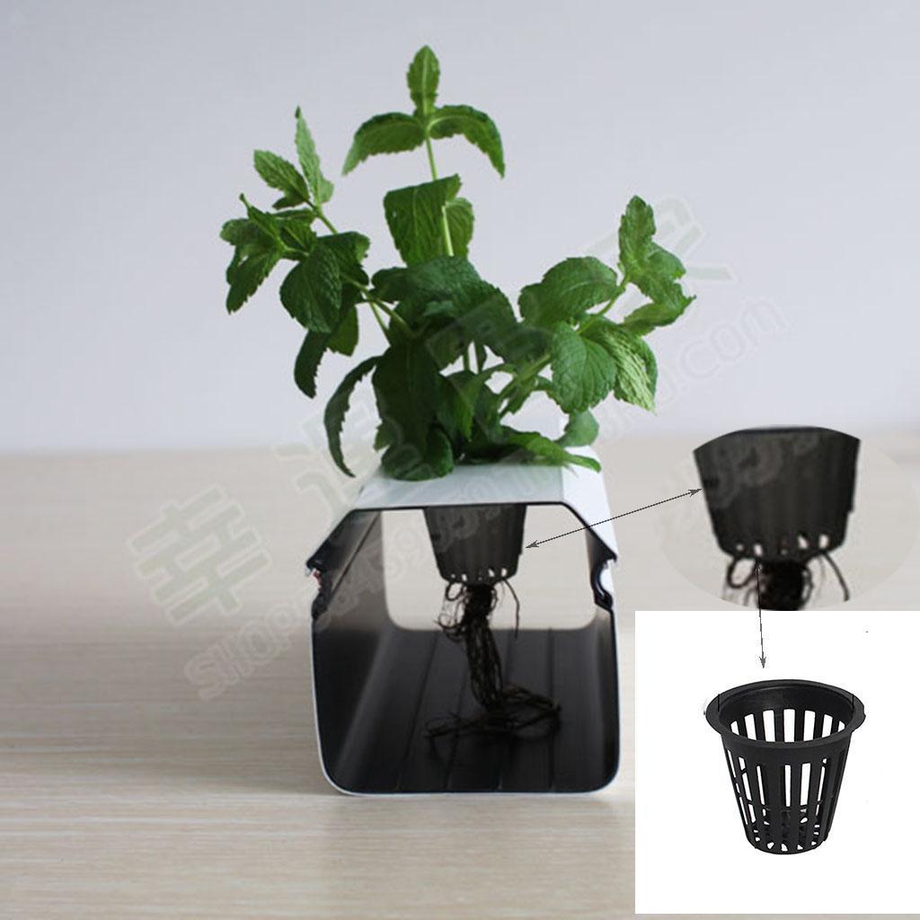 miniatura 3 - Kit Di Coltivazione Idroponica Da 5 Pezzi Per Vasi Da Rete In Rete Resistente