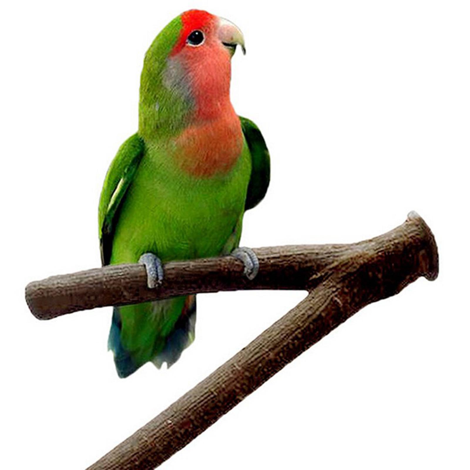 thumbnail 12 - Bird-Perch-Wood-Stand-Bird-Cage-Swing-Branch-for-Parrot-Parakeet-Cockatiel