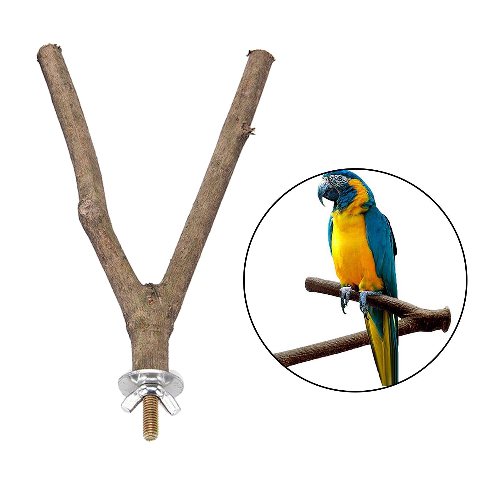 thumbnail 22 - Bird-Perch-Wood-Stand-Bird-Cage-Swing-Branch-for-Parrot-Parakeet-Cockatiel