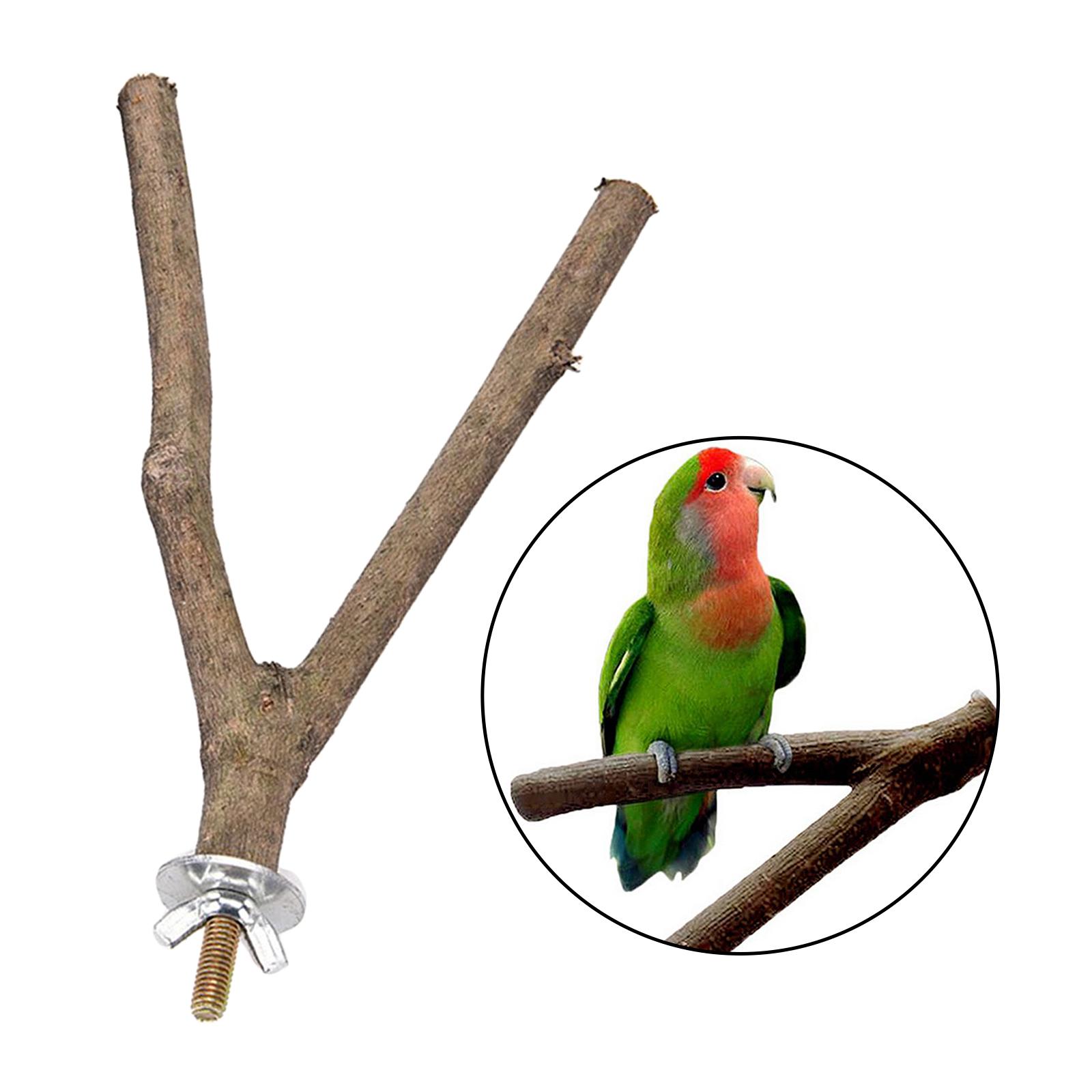 thumbnail 17 - Bird-Perch-Wood-Stand-Bird-Cage-Swing-Branch-for-Parrot-Parakeet-Cockatiel