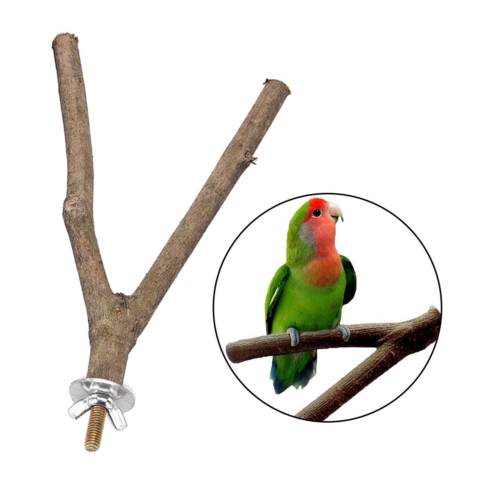 thumbnail 41 - Bird-Perch-Wood-Stand-Bird-Cage-Swing-Branch-for-Parrot-Parakeet-Cockatiel