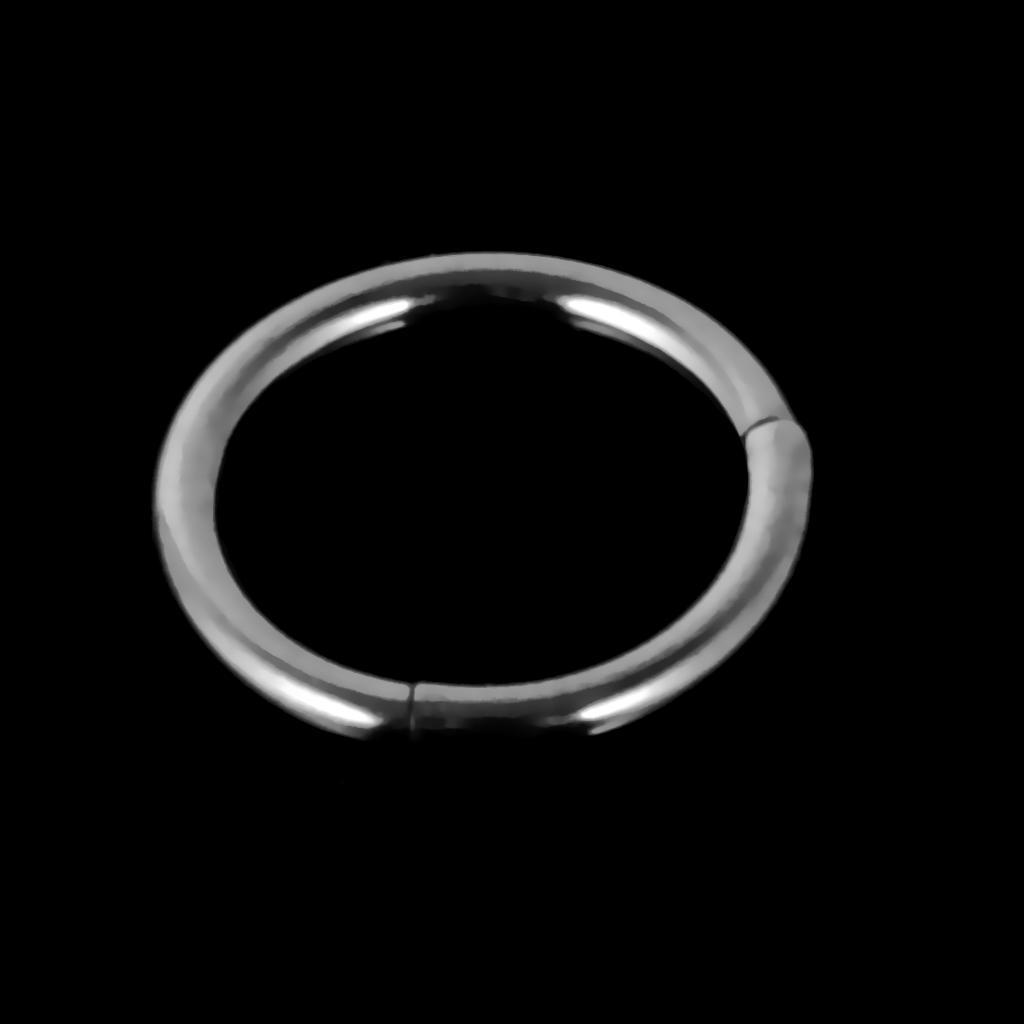 Stainless-Steel-14g-16g-Hinged-Clicker-Septum-Segment-Hoop-Ring-Ear-Lip-Nose thumbnail 4