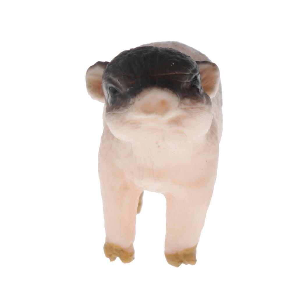 Modello-di-animali-selvatici-giocattolo-educativo-regalo-per-bambini-neonati miniatura 10