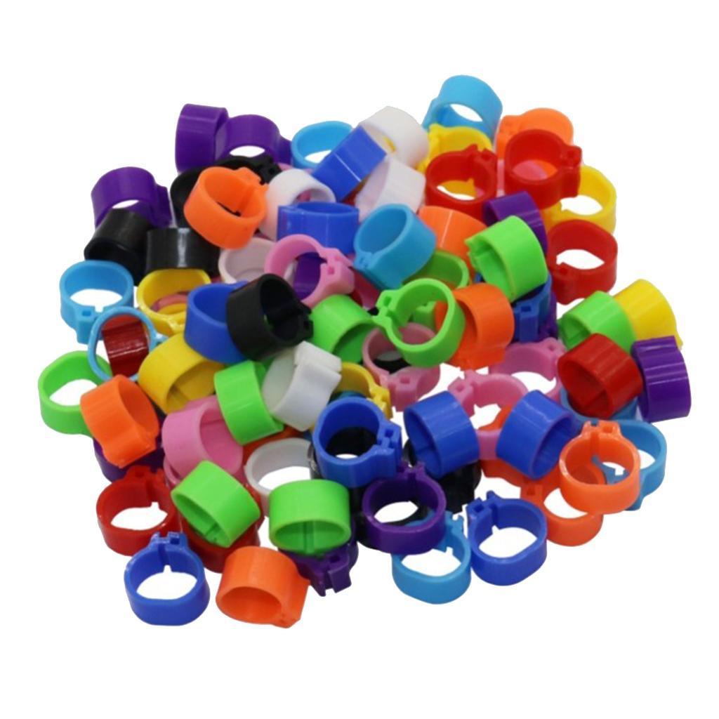 100pcs-anello-per-piede-di-pollame-100-pezzi-di-coscia-di-pollo-anelli-piccione miniatura 12