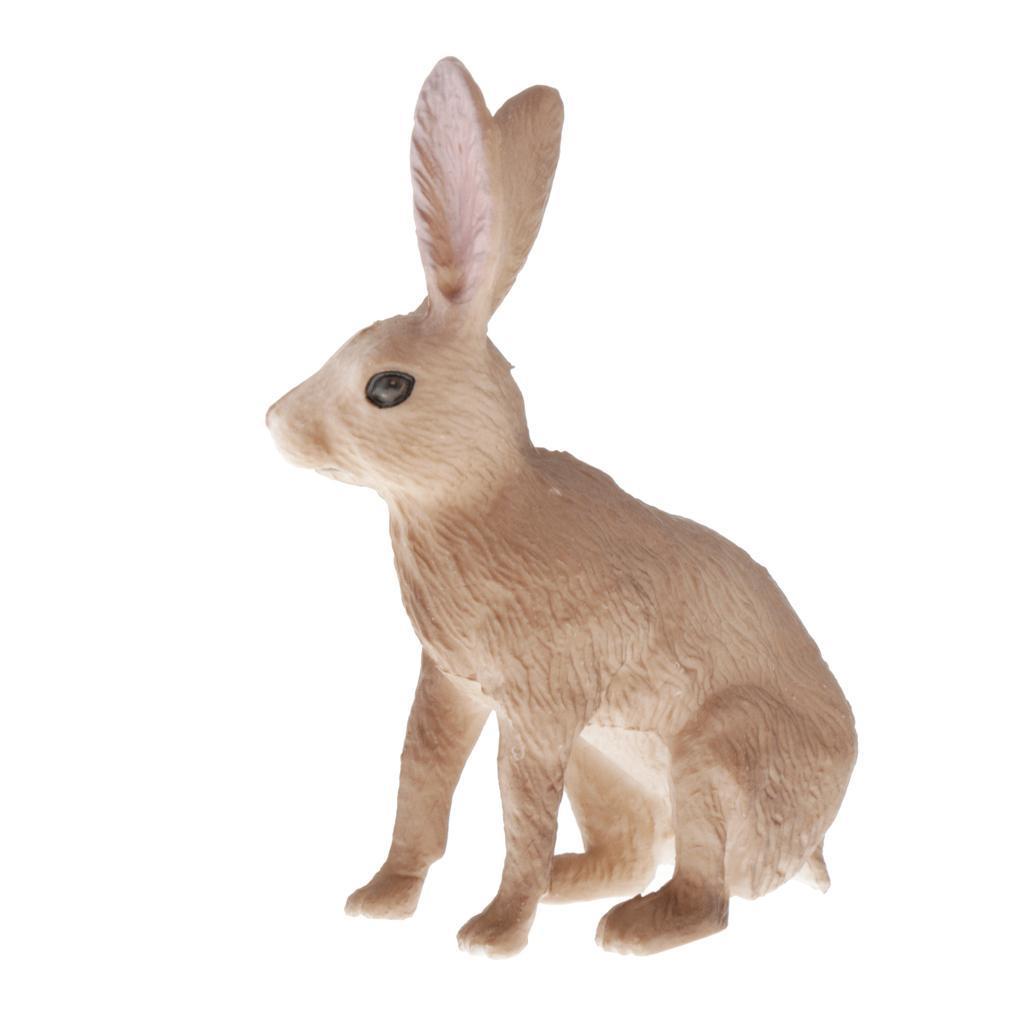 Modello-di-animali-selvatici-giocattolo-educativo-regalo-per-bambini-neonati miniatura 14