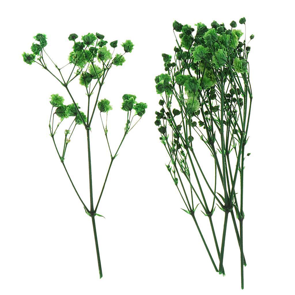 Echte Getrocknete Gepresste Blume Blätter Blumenstrauß Dekorative