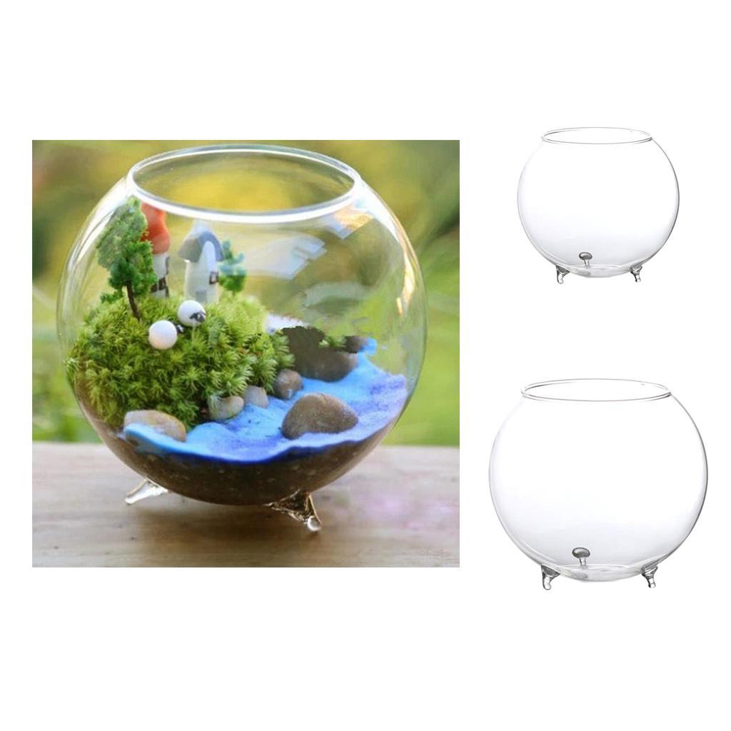 1 Pieces Flower Vase Terrarium Diy Plants Hydroponic Pot Mini Fish Tank Ebay