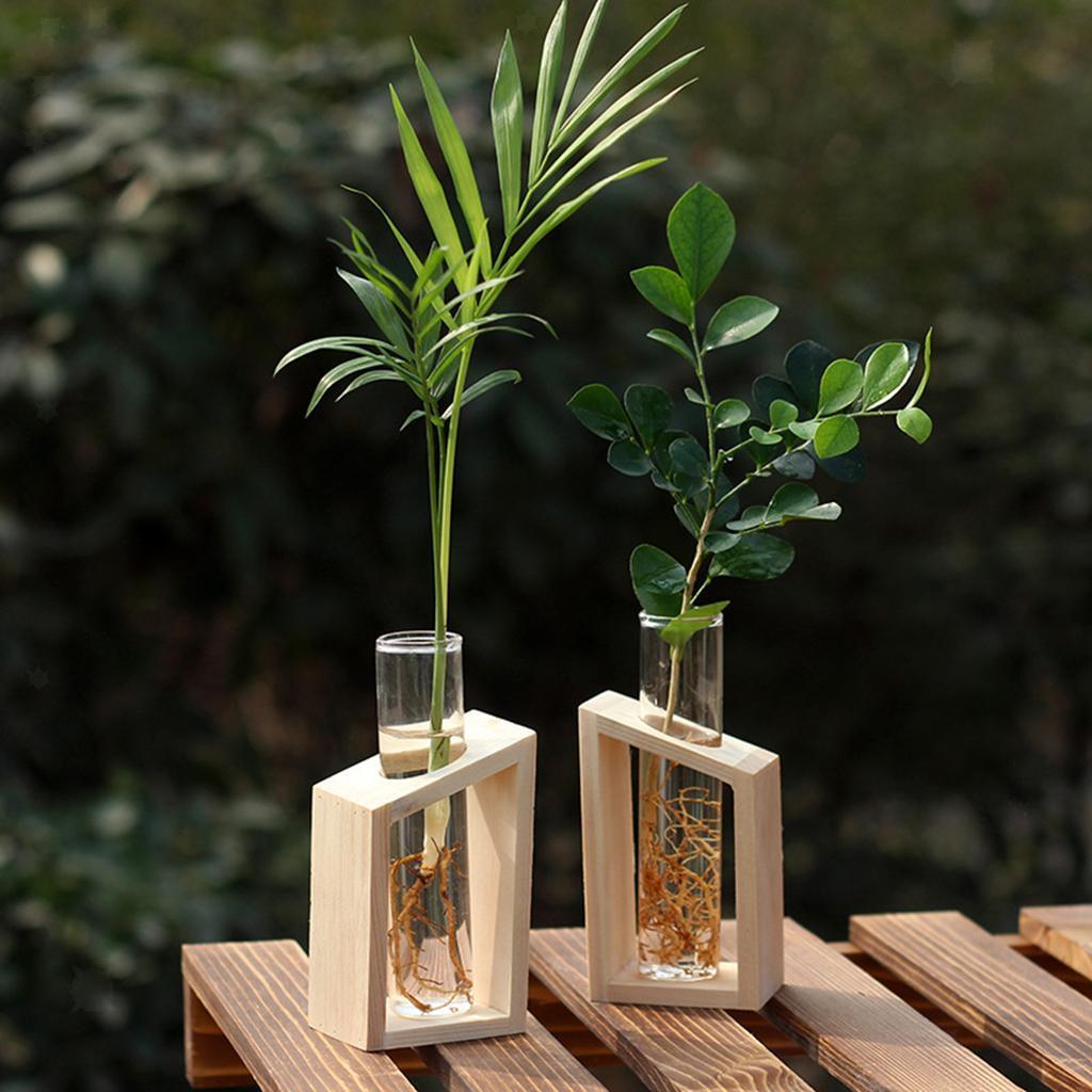 Indexbild 4 - Glas Reagenzglas Vase Pflanzgefäß Blumentöpfe Terrarium für