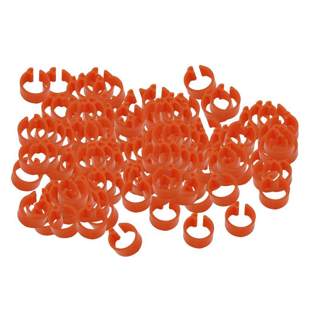 100pcs-anello-per-piede-di-pollame-100-pezzi-di-coscia-di-pollo-anelli-piccione miniatura 19