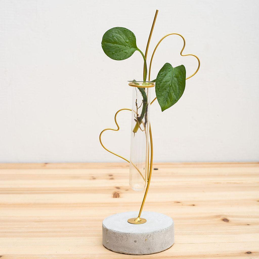 Indexbild 15 - Pflanzen Glasvasen Hydroponische Blumentöpfe Metallrahmenständer