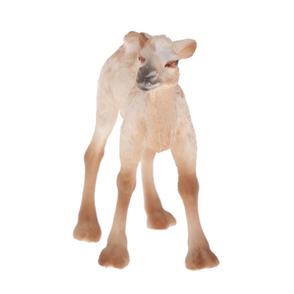 Modello-di-animali-selvatici-giocattolo-educativo-regalo-per-bambini-neonati miniatura 3