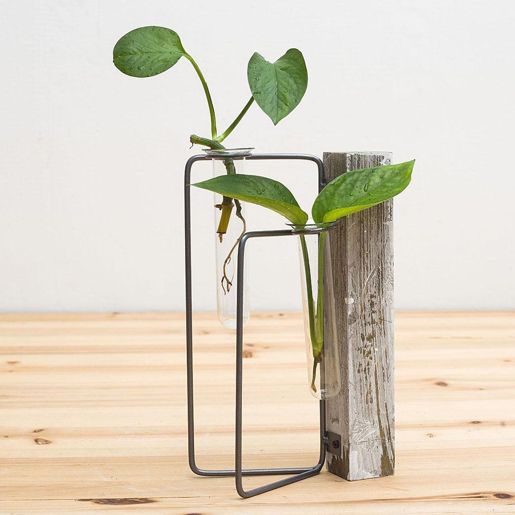 Indexbild 26 - Pflanzen Glasvasen Hydroponische Blumentöpfe Metallrahmenständer