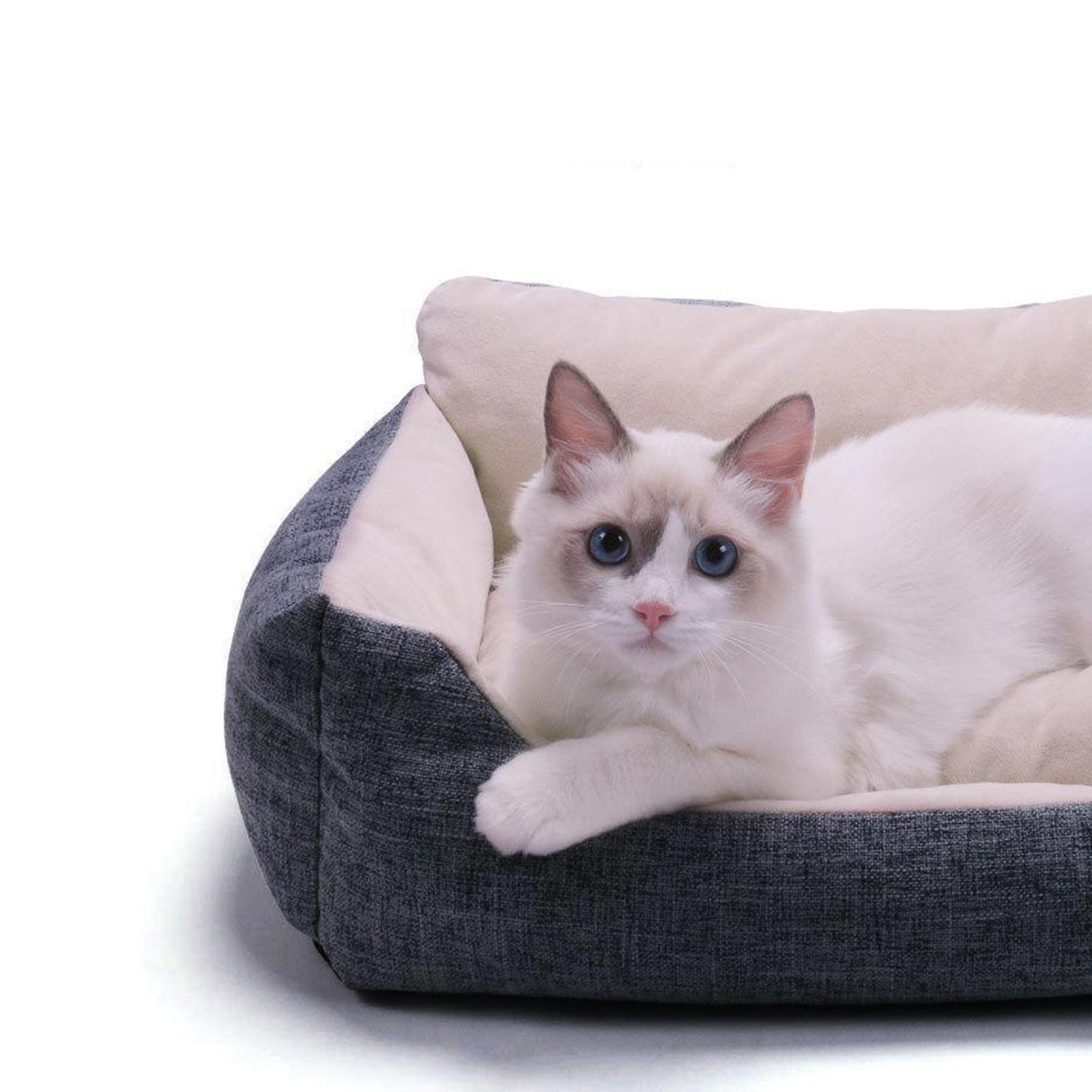 miniature 46 - Chien pour animaux de compagnie, lit de chat doux et lit en peluche chennel