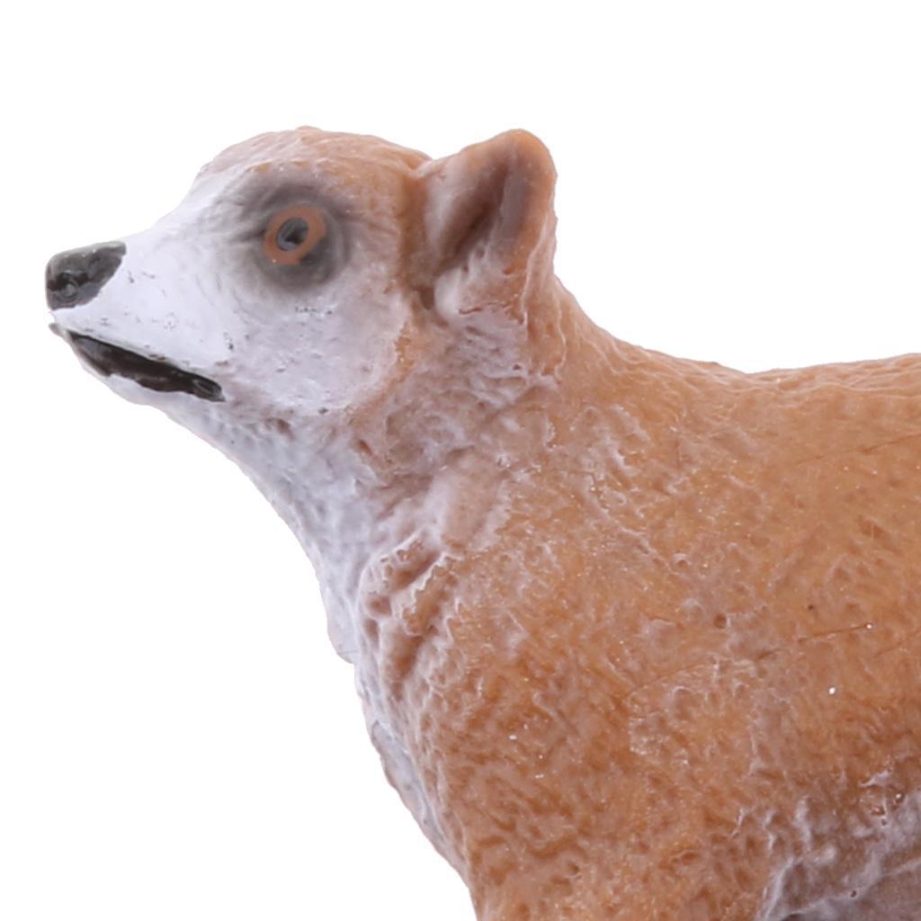 Realistico-Selvaggio-Farm-Natura-Animale-Albero-Modello-Azione-Figure-Kid miniatura 5