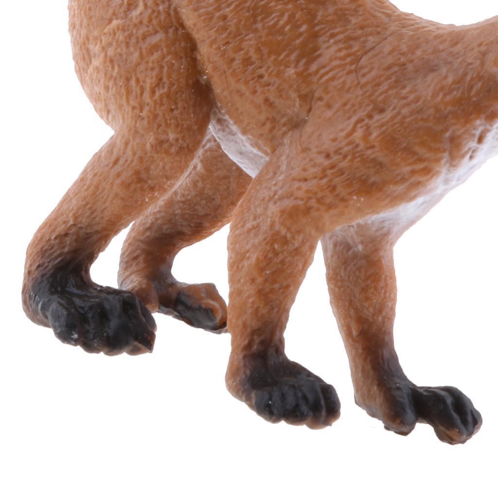Realistico-Selvaggio-Farm-Natura-Animale-Albero-Modello-Azione-Figure-Kid miniatura 4