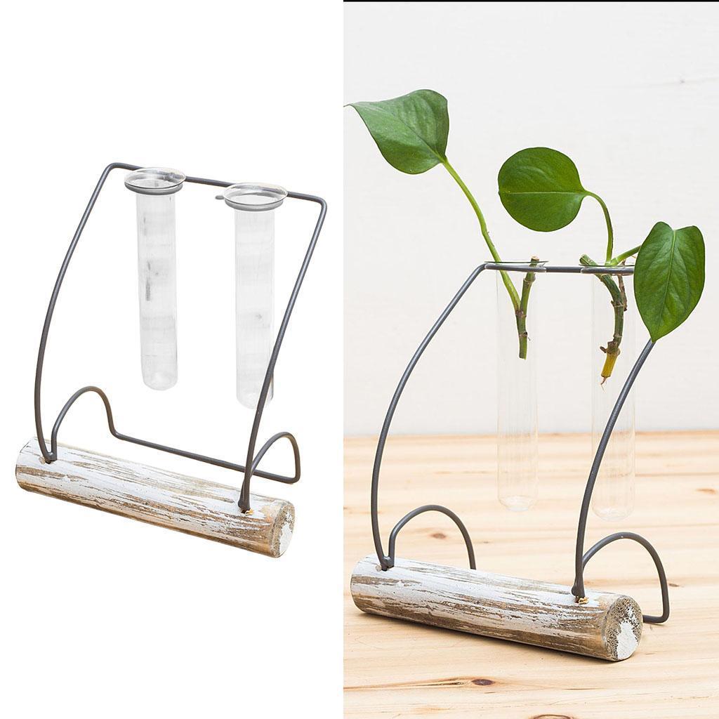 Indexbild 57 - Pflanzen Glasvasen Hydroponische Blumentöpfe Metallrahmenständer