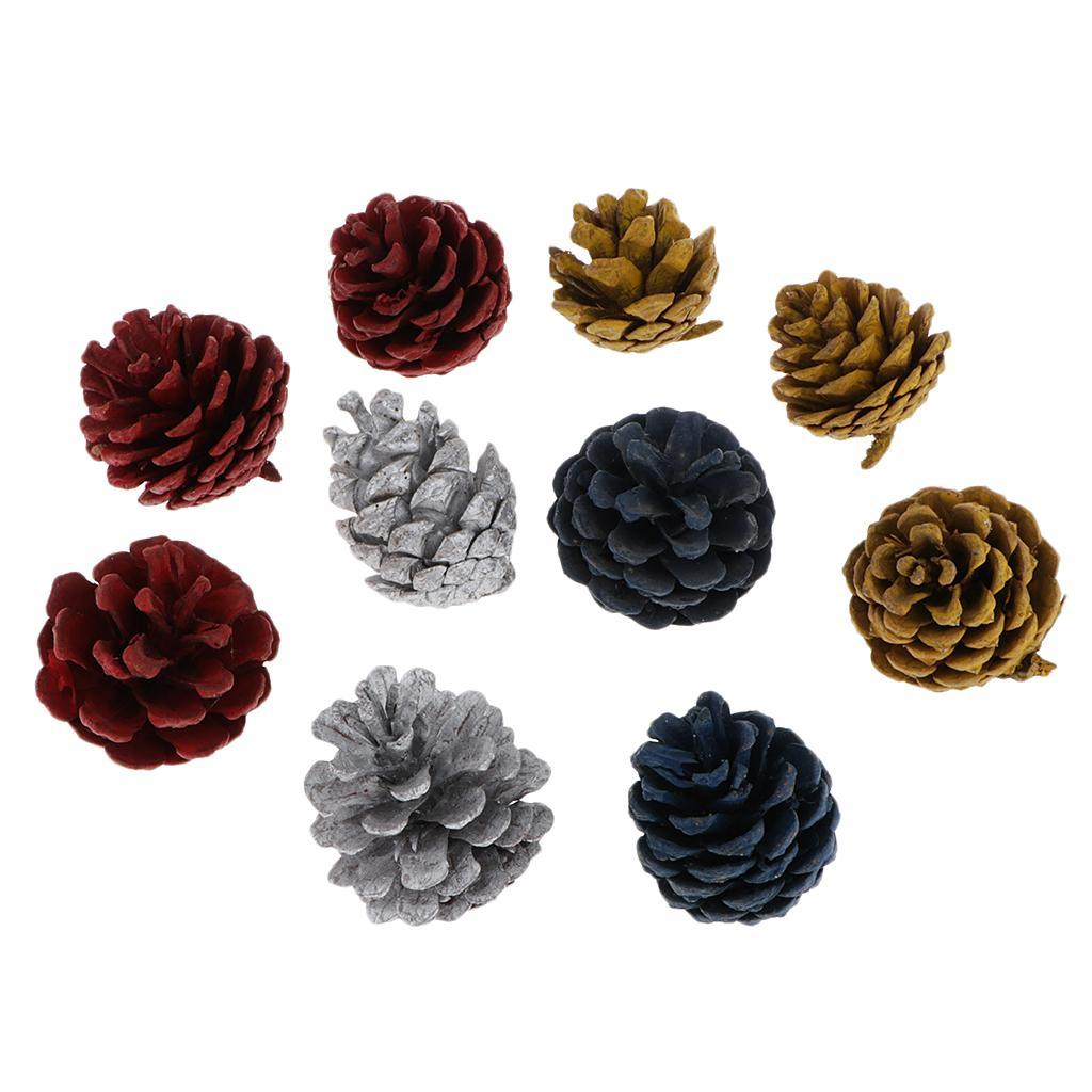 10Pcs Dyed Natural Dried Pine Cones For Kids Crafts Home Off