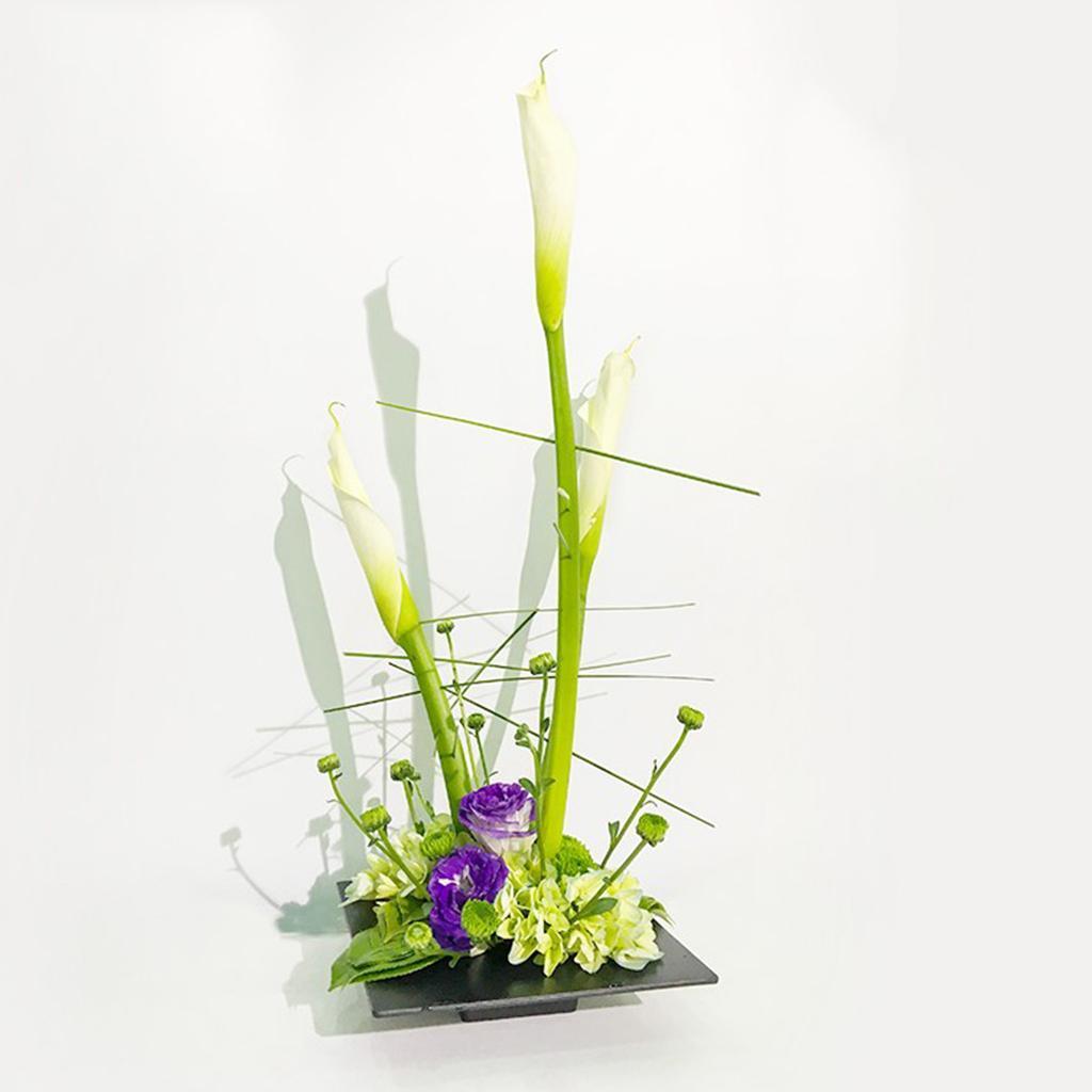 Plastic-Ikebana-Suiban-Vase-Pot-Flower-Arranging-Base-Holder-Various-Shape thumbnail 5